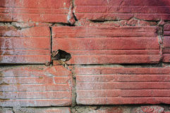 Ziegelstein beschädigt Lizenzfreies Stockfoto