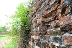 Ziegelstein in der Dong Hoi-Zitadellenwand, Quang Binh, Vietnam Stockfoto
