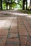 Ziegelstein-Gehweg an der Davidson Hochschule Stockfotos