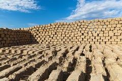 Ziegelstein gemacht vom Lehm und vom Stroh Lizenzfreies Stockbild