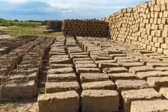 Ziegelstein gemacht vom Lehm und vom Stroh Stockbild