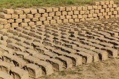 Ziegelstein gemacht vom Lehm und vom Stroh Stockfotografie