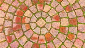 Ziegelstein-Kreis-Muster auf dem Bürgersteig Stockbild