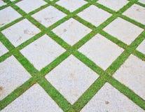 Ziegelstein und Gras Stockbilder