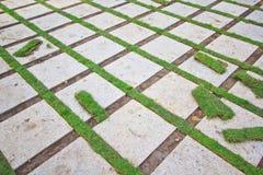 Ziegelstein und Gras Stockfoto
