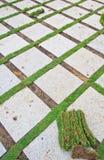 Ziegelstein und Gras Lizenzfreies Stockfoto