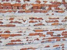 Ziegelstein-und Mörser-Wand Lizenzfreies Stockbild