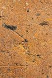 Ziegelstein vom altem rosa Tuffbeschaffenheits-Hintergrundmakro, selektiver Fokus lizenzfreie stockfotografie