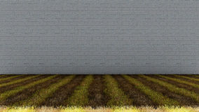 Ziegelstein-Wand im Hintergrund und im grasartigen Boden lizenzfreie stockfotografie
