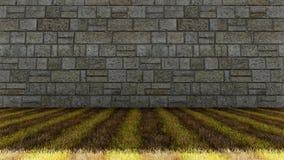 Ziegelstein-Wand und Gras-Boden Stockbilder