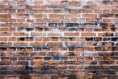 Ziegelstein-Wandhintergrund Lizenzfreie Stockbilder