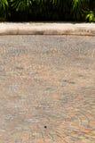Ziegelsteingehweg auf sonnigem lizenzfreies stockfoto