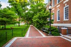 Ziegelsteingehweg und -gebäude bei John Hopkins University, Baltimore stockfotografie