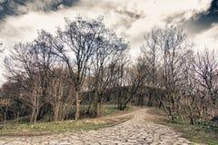 Ziegelsteinstraße zum Hügel Stockfotos