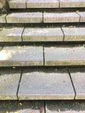 Ziegelsteintreppe Lizenzfreies Stockfoto