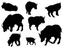Ziegen-Schattenbild-Tier-Clipart Stockfotos