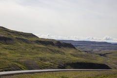 Ziegen von Norwegen Lizenzfreie Stockbilder