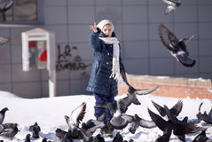 Ziehen Sie die Tauben ein Lizenzfreie Stockbilder