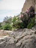 Ziehen Sie sich bei Jativa, Valencia y Murcia, Spanien zurück Lizenzfreies Stockbild