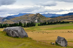 Ziehen Sie sich den Hügel zurück, der für seine riesigen Kalksteinfelsformationen in Neuseeland berühmt ist Stockbild