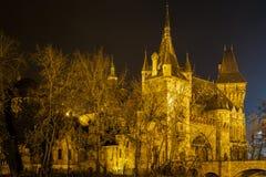 Ziehen Sie sich im Stadt-Park von Budapest durch die Nachtlichter Budapest zurück Lizenzfreie Stockbilder