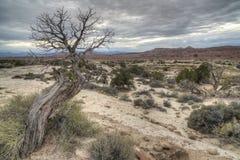 Ziehen Sie sich Tal Utah zurück Lizenzfreies Stockfoto
