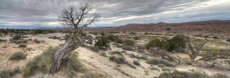 Ziehen Sie sich Tal Utah zurück Stockbild