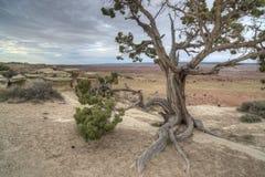 Ziehen Sie sich Tal Utah zurück Lizenzfreie Stockfotografie