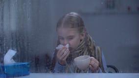 Ziek meisje die en hete thee achter regenachtig venster, de epidemie van het griepvirus niezen drinken stock videobeelden