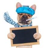Zieke zieke hond Royalty-vrije Stock Afbeelding
