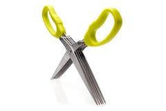 Zielarscy nożyce z gręplą zdjęcie stock