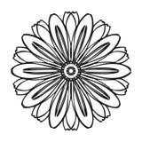 Zielarska życiorys kwiat ikona, prosty styl ilustracja wektor