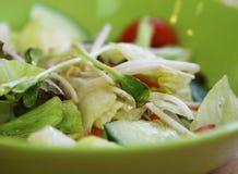 Zielarski sałatkowy Tajlandzki jedzenia zakończenie w górę makro- Obraz Royalty Free