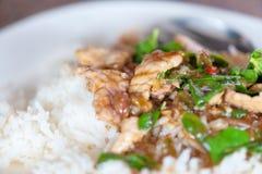 Zielarski Tajlandzki jedzenie Fotografia Stock