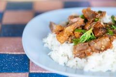 Zielarski Tajlandzki jedzenie Fotografia Royalty Free