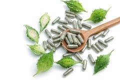 Zielarskie pigułki z gorzką gurdą, homeopatyczna medycyna obraz royalty free