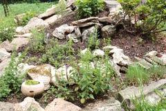 Zielarskiego ogródu spirala obrazy stock