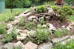 Zielarskiego ogródu spirala obrazy royalty free