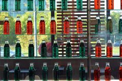 Zieleń i czerwone butelki ściany szkła półki w restauraci z szklanym okno w tle Obraz Royalty Free