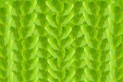 Zieleń leafs bezszwowy tło Fotografia Royalty Free