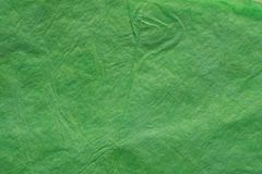 Zieleń marszcząca tkankowego papieru bacground tekstura Obrazy Stock