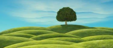zieleń opuszczać drzewa Fotografia Royalty Free