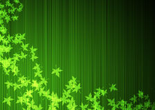 zieleń opuszczać klonu Zdjęcie Stock