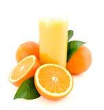 zieleń opuszczać pomarańcze dojrzały Obraz Royalty Free