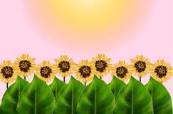 Zieleń opuszcza i graficzny kwiatu tło Fotografia Royalty Free