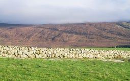 Zieleń paśniki i kamienna ściana w Północnym - Ireland zdjęcie royalty free