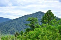 Zieleń szczyty Sikhote-Alin góry zdjęcie stock