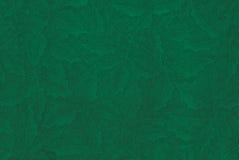 Zieleń textured uświęcony tło. Zdjęcia Stock
