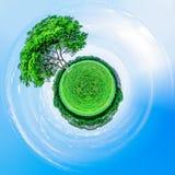 Zieleń z małym planeta skutkiem, Zielona planeta, konceptualna grafika Fotografia Stock