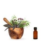 ziele aromatherapy istotny olej Obrazy Stock